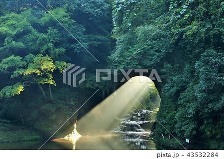 千葉県 濃溝の滝からの朝の光 43532284