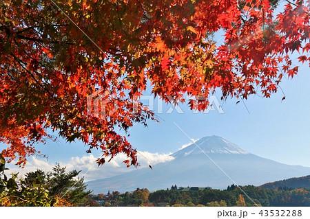 日本の秋 富士山と紅葉 43532288
