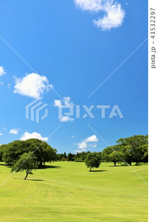 青空の広い公園 43532297