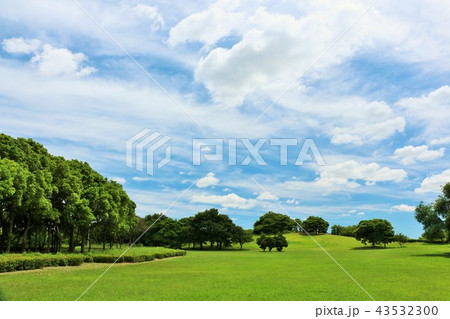 夏の青空と公園風景 43532300