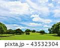 青空 公園 広場の写真 43532304