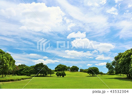 夏の青空と公園風景 43532304