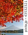 富士山 山 晴れの写真 43532321