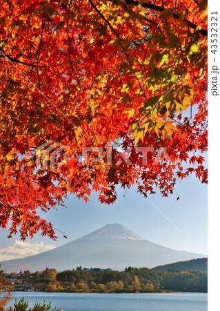 日本の秋 富士山と紅葉 43532321