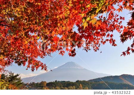 日本の秋 富士山と紅葉 43532322