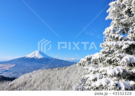 富士山と冬景色 43532329