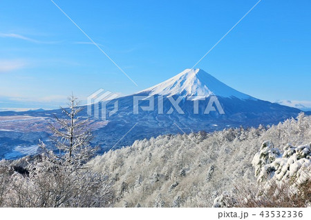 富士山と冬景色 43532336