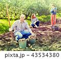 ファミリー 家族 庭の写真 43534380
