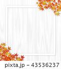 白木 フレーム 紅葉のイラスト 43536237