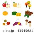 果物 食材 セットのイラスト 43545681