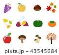 果物 食材 セットのイラスト 43545684