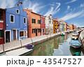 Colorful houses of Burano 43547527