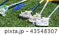 Four lacrosse sticks laying on the turf 43548307