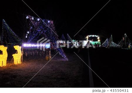 群馬県榛名湖のクリスマスイルミネーションフェスティバル、抽象的なきらきらした装飾、ピンぼけの光 43550431