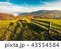 フェンス 垣根 柵の写真 43554584