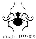 蜘蛛のイラスト 43554615