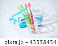 歯ブラシ 歯磨き 虫歯予防の写真 43558454