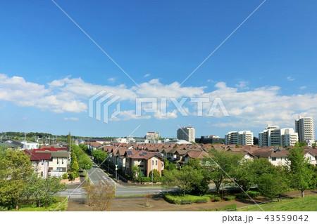 爽やかな青空の新興住宅街 43559042