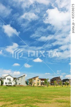 気持ちいい青空の街並みと公園 43559075