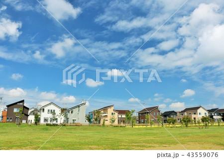気持ちいい青空の街並みと公園 43559076