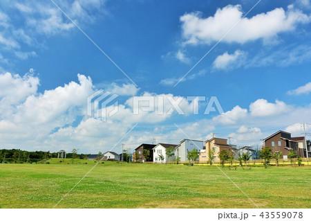 気持ちいい青空の街並みと公園 43559078