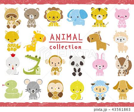 動物のセット 手描き風 43561863