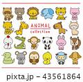 動物 セット 手描き風のイラスト 43561864