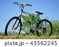 自転車 43562245