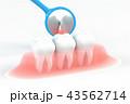 歯科衛生のイラストCG 43562714