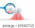 歯科衛生のイラストCG 43562715