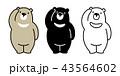 くま クマ 熊のイラスト 43564602