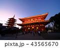 浅草寺 五重塔 宝蔵門の写真 43565670