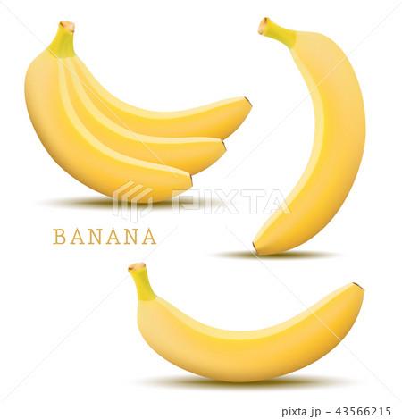 Vector banana. Bunches of fresh banana fruits 43566215