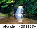 濃溝の滝 光芒 清水渓流公園の写真 43566960