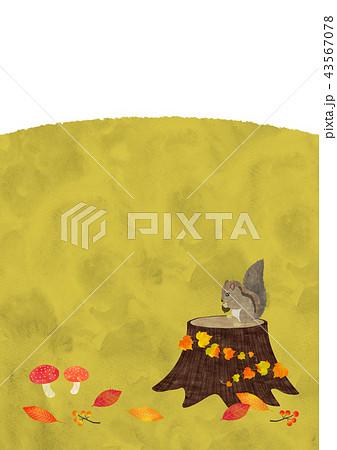リスと秋の野原 43567078