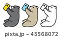 シロクマ 白熊 キャラクターのイラスト 43568072