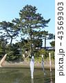 森戸神社 海岸 晴れの写真 43569303