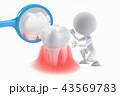 歯の健康状態のチェックのイラストCG 43569783