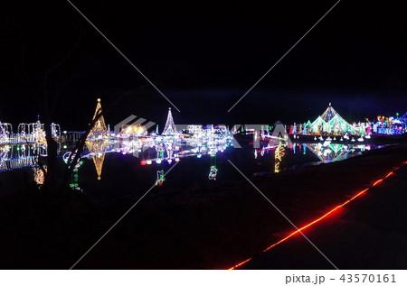 群馬県榛名湖のクリスマスイルミネーションフェスティバル、抽象的なきらきらした装飾、ピンぼけの光 43570161