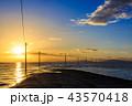 太良町 海床路の夜明けと日の出 【佐賀県】 43570418