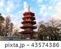 川崎大師 平間寺 寺の写真 43574386