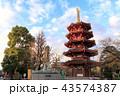 川崎大師 寺 風景の写真 43574387
