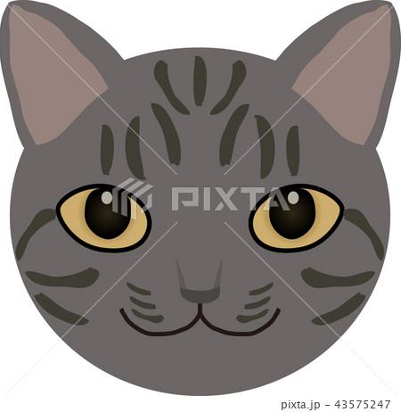 猫 43575247