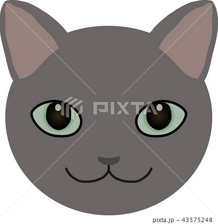猫 43575248