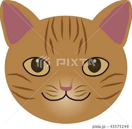 猫 43575249