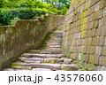 階段 石階段 石段の写真 43576060