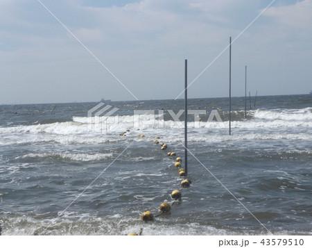黄色い海水浴場表示ブイ 43579510