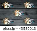 列石 石 卵のイラスト 43580013