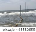 黄色い海水浴場表示ブイ 43580655