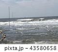 黄色い海水浴場表示ブイ 43580658